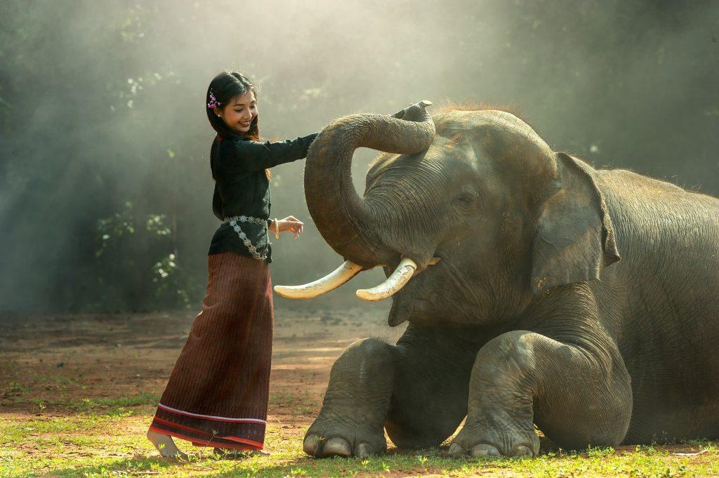 Asie insolite: découvrez le TOP 3 des faits les plus étranges